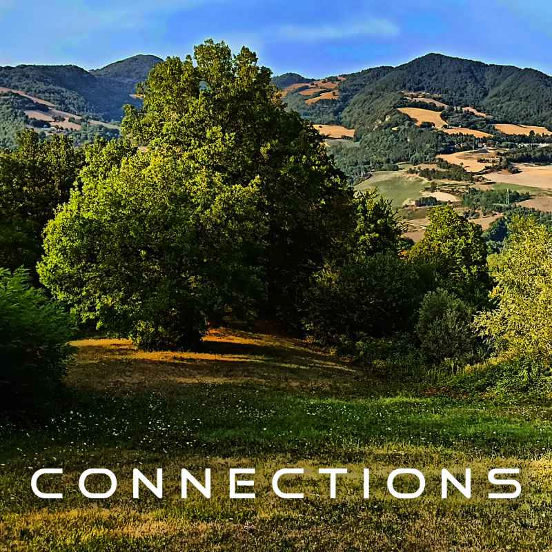 Cover of Connections 03