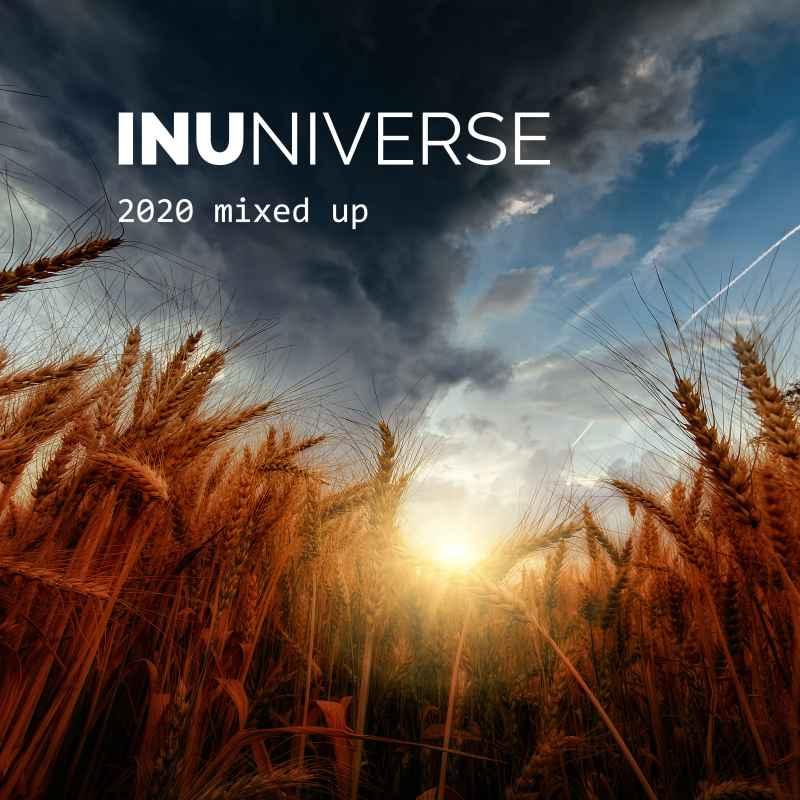 INUniverse - 2020 mixed up